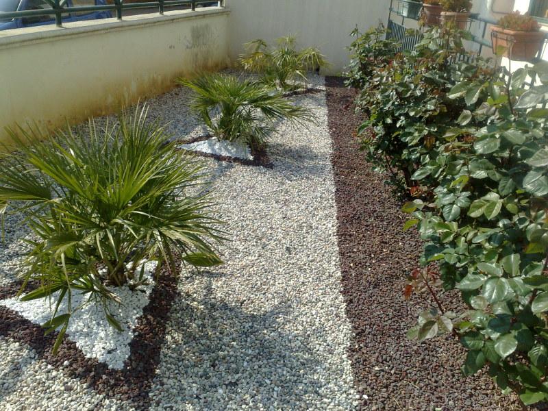 Berardino Antonio Casamassima–Giardinieri a Bari e provincia