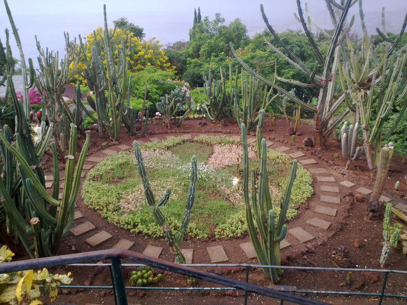 Giardino Zen Giardinieri In Affitto : Berardino antonio casamassima giardinieri a bari e provincia