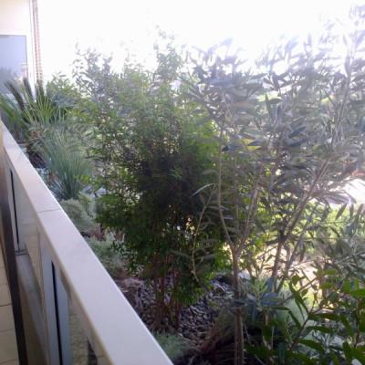 Realizzazione giardino pensile Puglia