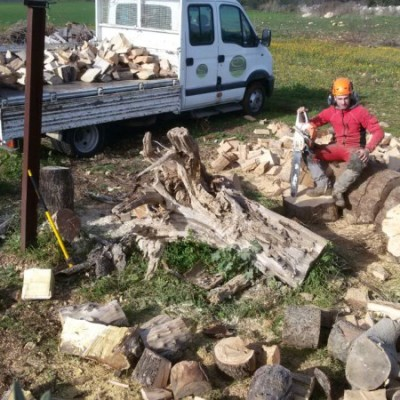 Depezzatura albero dopo abbattimento