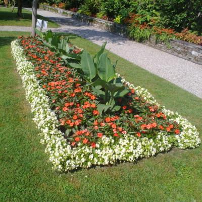 Giardino pubblico 4
