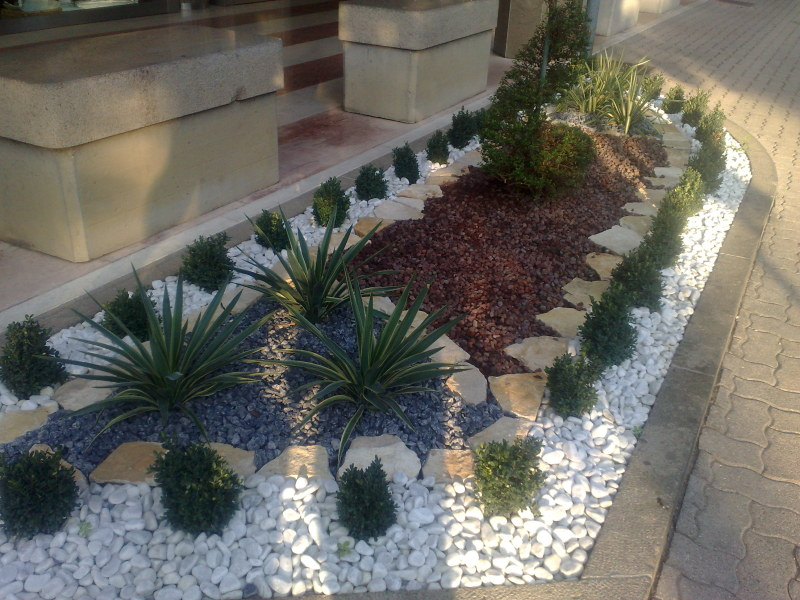 Giardino Zen Pistoia : Giardini zen casamassima giardiniere berardino