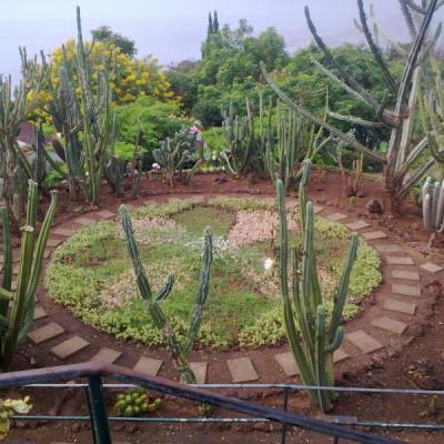 Progettazione giardino zen Puglia
