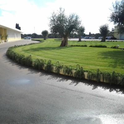 Realizzazione giardino Bari