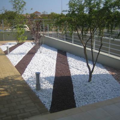 Realizzazione giardino zen Casamassima