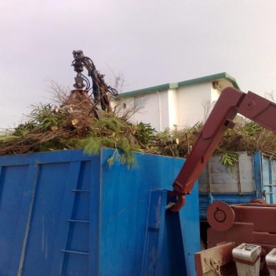 smaltimento rifiuti legnosi così come la normativa prevede (2)