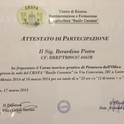 Certificazione potatura ulivo
