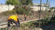 Berardino Ripristino Ferrovia (10)