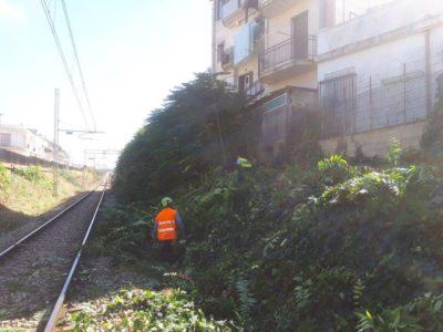 Berardino Ripristino Ferrovia (14)