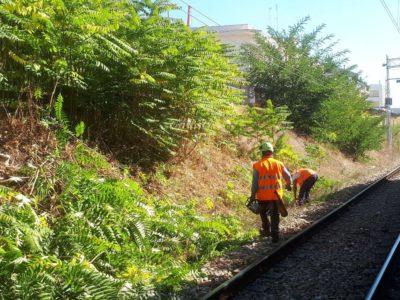 Berardino Ripristino Ferrovia (7)