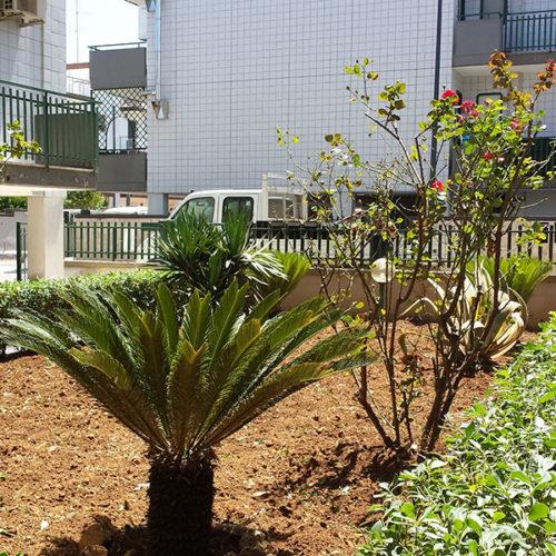giardino_Casamassima_5